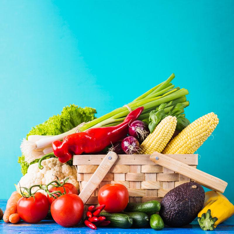 Feira</br>Agroecológica