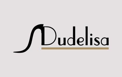 dudelisa-logo